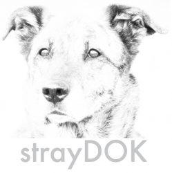 cropped-logo_klein.jpg