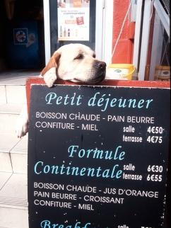Hund-&-Speisekarte-Kopie